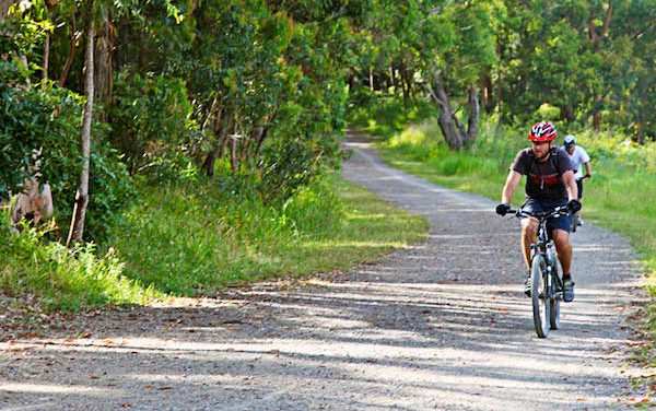 $33.2 Million Comprehensive Bicycle and Pedestrian Plan Heads to the Full Board for Approval